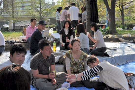 第45回「文化から学ぶ韓国語」~お花見04