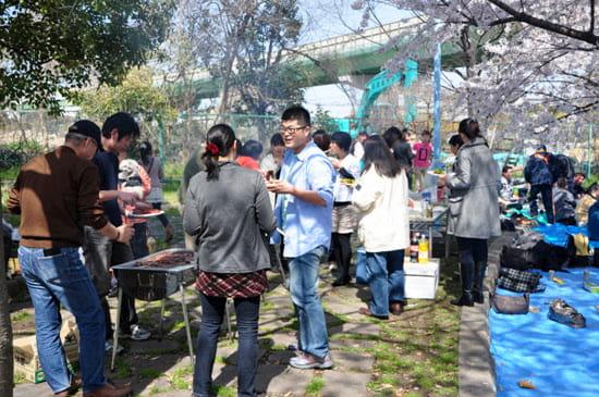 第51回「文化から学ぶ韓国語」~美しい桜の中でお花見~01