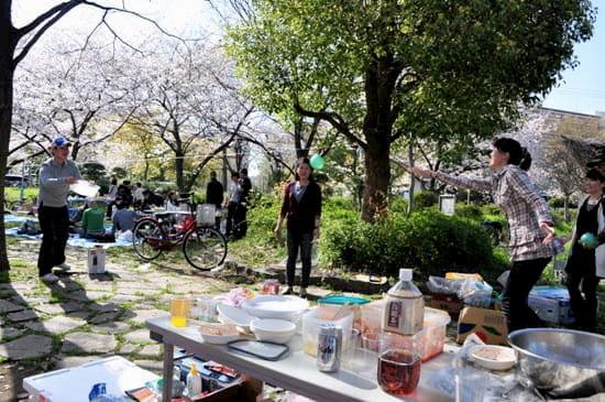第51回「文化から学ぶ韓国語」~美しい桜の中でお花見~02