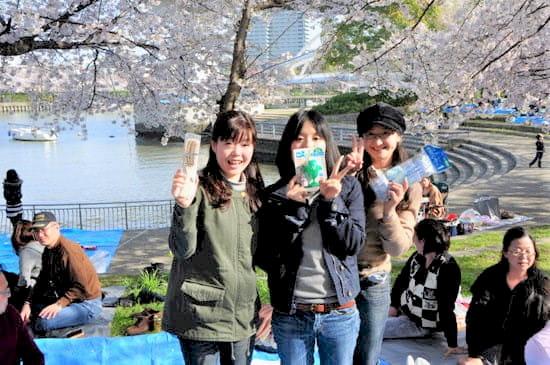 第51回「文化から学ぶ韓国語」~美しい桜の中でお花見~04