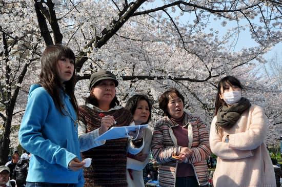 第56回文化から学ぶ韓国語-お花見02