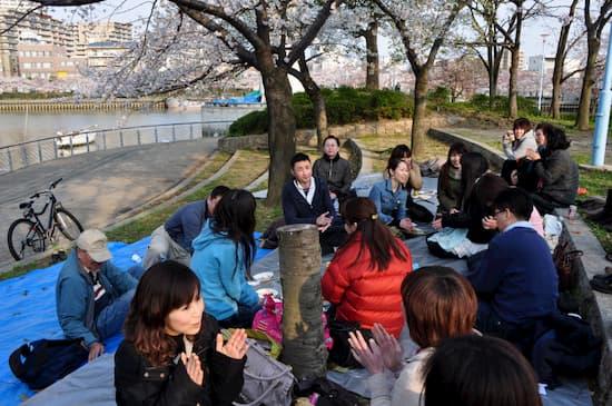 第56回文化から学ぶ韓国語-お花見05