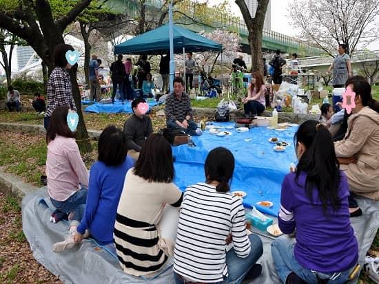 第66回「文化から学ぶ韓国語」ーお花見06