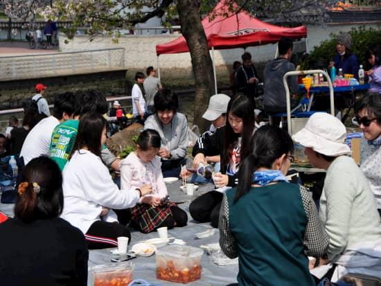 第72回文化から学ぶ韓国語ーお花見03